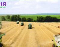 Світовому банку дозволили купити елеватори агрохолдингу «Мрія»