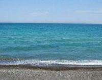 У Зеленского требуют изменить условия конкурса по разработке шельфа Черного моря